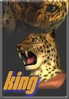 tekken 3 king face